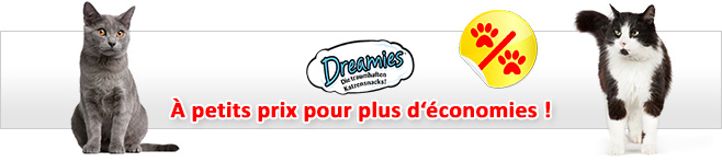 Friandises Dreamies pour chat