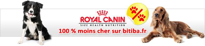 Croquettes Royal Canin Size pour chien