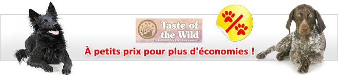 Croquettes Taste of the Wild pour chien