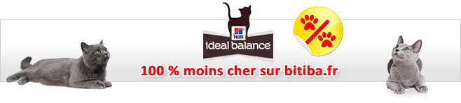 Croquettes Hill's Ideal Balance pour chat