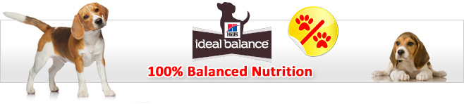 Hill's Ideal Balance Dry Dog Food