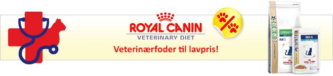 Royal Canin Kattefoder