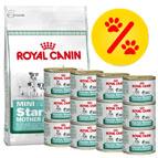 Bonnes affaires sur les lots mixtes d'aliments pour chien