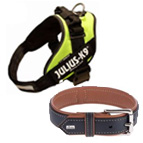 Dog Collars, Leads & Harnesses