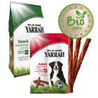 Friandises Bio pour chien
