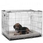 Cages d'intérieur pour chien