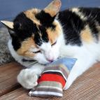Jouets avec menthe à chat et valériane pour chat