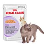 Comida húmeda gatos esterilizados