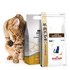 Aliments médicalisés pour chat
